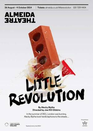 Little Revolution poster